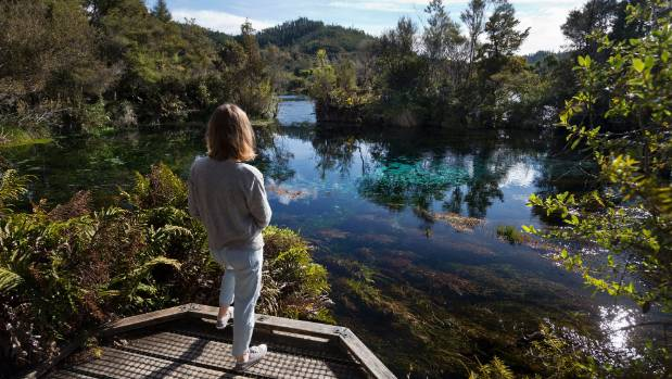 Te Waikoropupu Springs, near Takaka, are the largest freshwater springs in New Zealand and contain some of the clearest ...