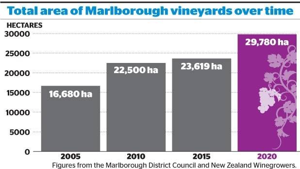 Vineyard land in Marlborough is predicted to increase by 24 per cent by 2020.