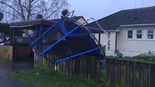 This tramp tried to bounce into a neighbour's house in Avondale.