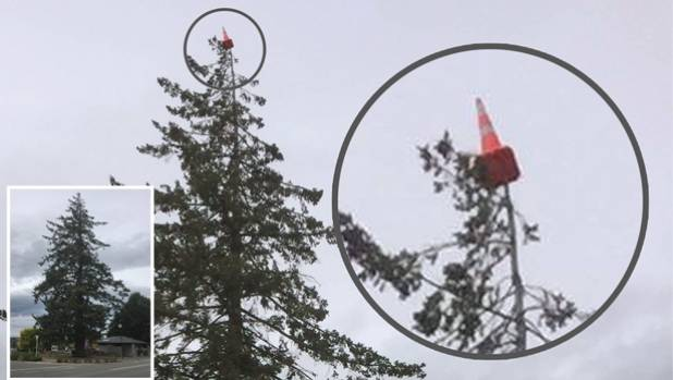 Fairlie residents are stumped after the town's tallest tree, a 50m-high Spruce, was adorned with a rubbery crown.
