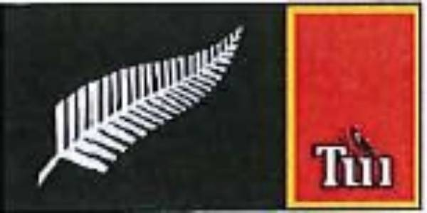 The silver fern was a popular choice, but this one was never going to fly.