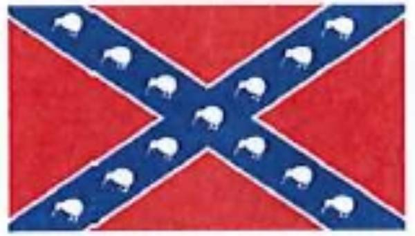 Swastikas were common, but Confederate flags less so.