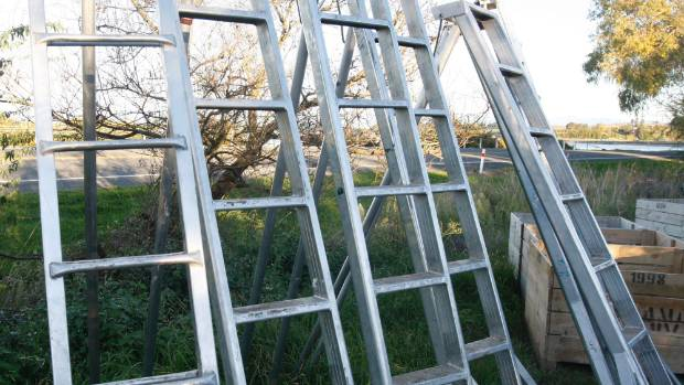 Ladders were responsible for more than 8000 claims by home gardeners to the ACC last year.