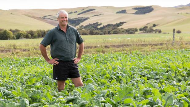 Getting the job done for beef lamb for Landscape jobs nz