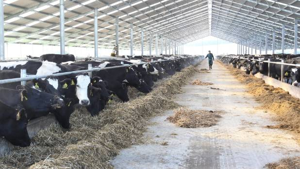 Some employees see farming and low dairy prices as the main reason for less perceived employment opportunities in Southland.
