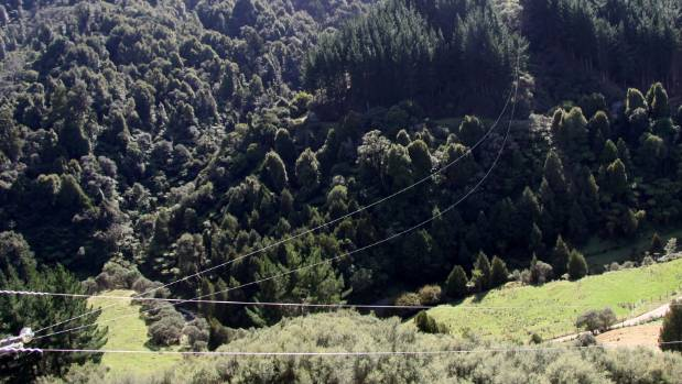 Helicopter pilot Alan Beck wants this wire spanning a valley at Omoana, 35km east of Eltham, removed.