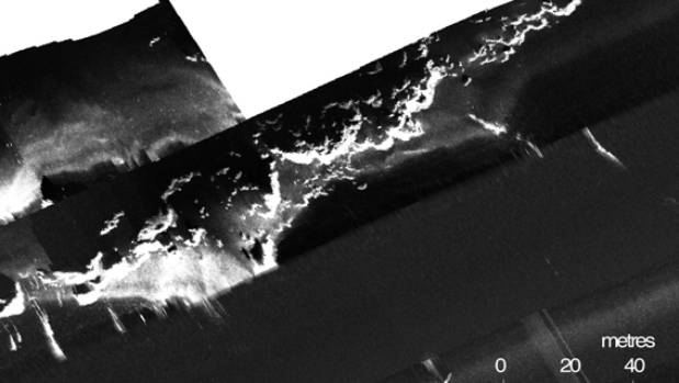 This sonar image shows horizontal scallop-shaped features on the bottom of Lake Rotomahana. Scientists believe it is a ...