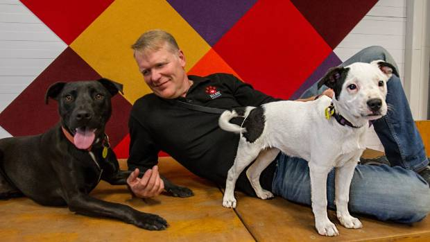 Dog trainer Geoff Bowers argues that breed-specific dog legislation has been proved ineffective.