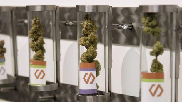 Displays at Shango Cannabis shop in Portland, Oregon, in 2015.