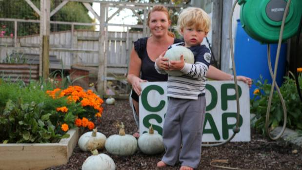 Urban farmer Laura Bennett and two-year-old Harry hope people will come and exchange homegrown goodies this weekend at ...