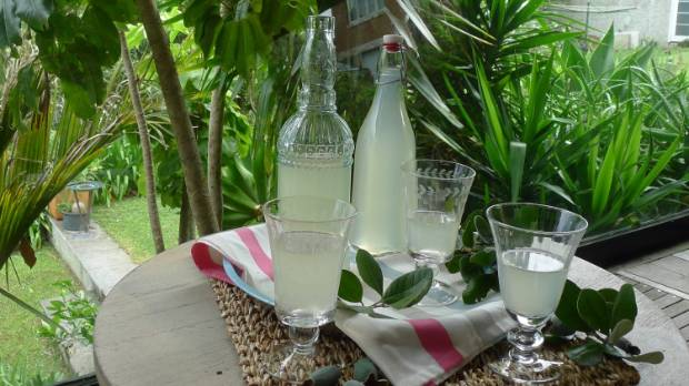 Homemade feijoa wine.