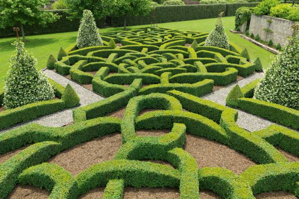 Garden of the week wow waikato garden created in just for Tudor knot garden designs