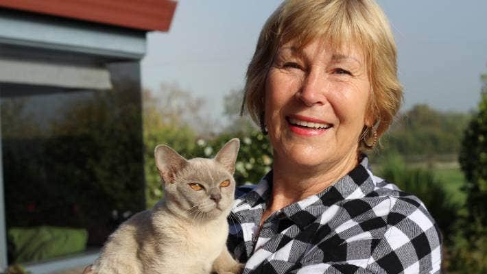 Breeder Looks Forward To Te Aroha Cat Show Stuff Co Nz