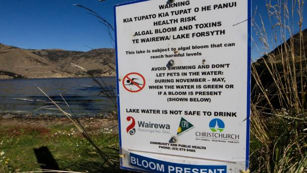 A sign at Lake Forsyth warns of toxic algae.