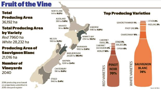 A snapshot of the 2016 wine industry, showing plantings and leading varieties.