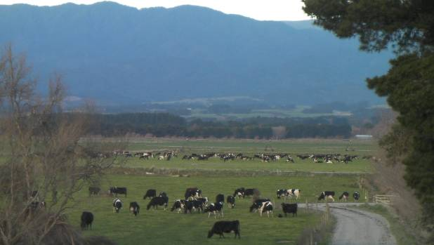 Part of James Cameron's 420-ha former dairy spread in south Wairarapa, taken in 2013.