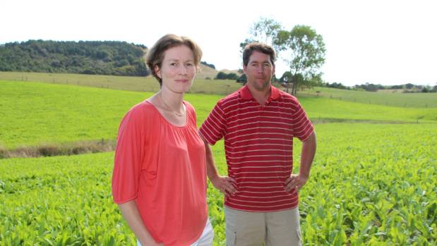 Daryl and Chris Breen lost two cows to facial eczema.