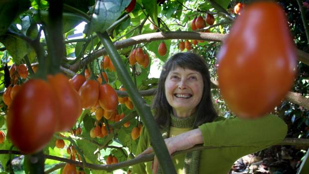 Maxine Fraser from the Waikato Tree Crops Association is an avid forager, but doesn't limit herself to fruit and nut trees.