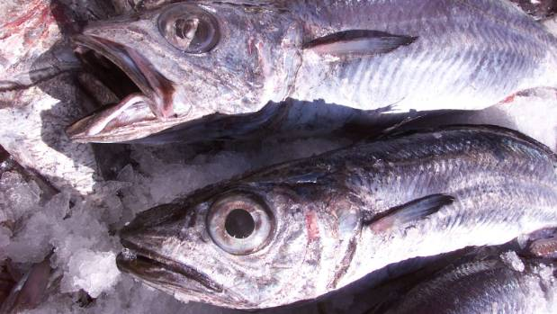Eating fish can help you sleep well at night.