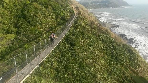 Walking the 40 metre swing bridge along Paekakariki to Pukerua Bay trail.