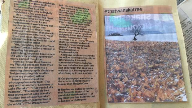 A close up of a newspaper clipping kept by Gwenda Rowlands, 85, of Wanaka about #thatwanakatree.