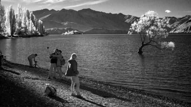 Selfies in monochrome. Photographer Tony Bridge observes public interaction with That Wanaka Tree.