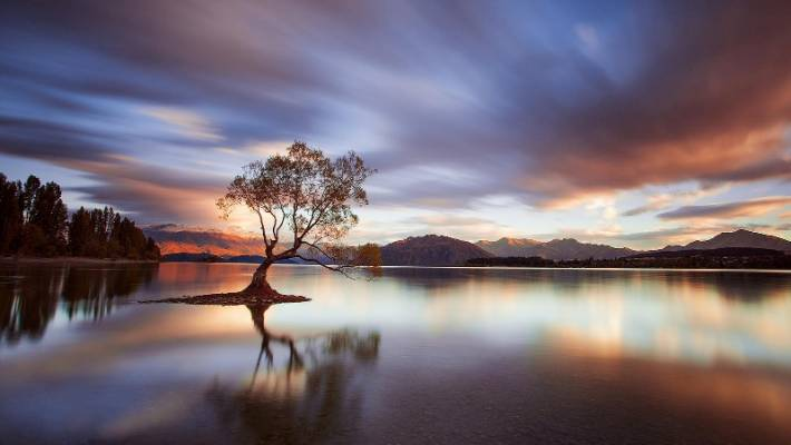 Rob Dickinson discovered Wanaka's lone willow on a satin smooth evening light.