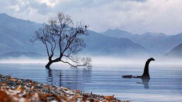 Monster, swimmer or drift wood? Wanaka resident Rob Ormandy was at That Wanaka Tree in autumn, 2015.