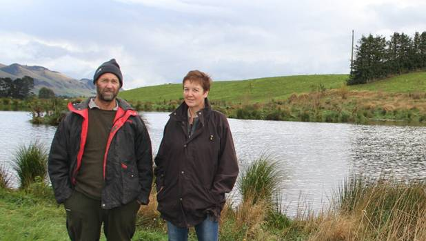 Shane and Eileen Walker's wetlands on their dairy farm near Gore.