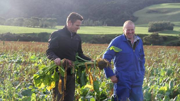 Agribusiness consultant Deane Carson and Waikawa Valley farmer Allan Marshall at Glenfern farm during the Beef+Lamb New ...