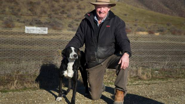 Ginger Anderson and his heading dog Don. Anderson has been granted life membership to the New Zealand Sheep Dog Trial ...