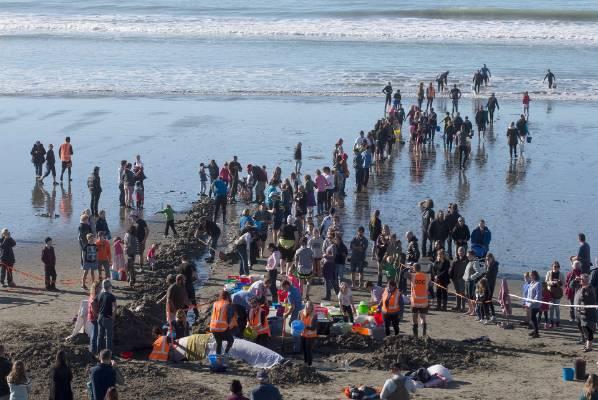 Dozens help refloat a stranded false killer whale at Christchurch's Waimairi Beach on Sunday.