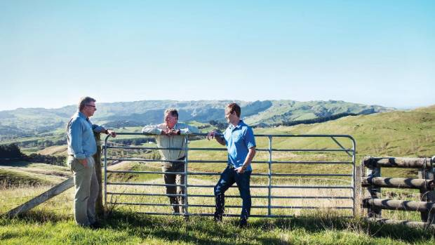 From left to right: Ben Gilmour, Senior Manager Moore Stephens Markhams, Guy Coats, and Chris Lamb, ASB Bank, discuss ...