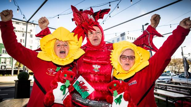 Image result for wales rugby fans