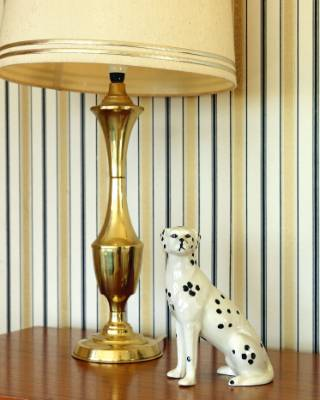 The gold lamp is an $8 score from a local St Vincent de Paul store, the dalmatian is from the Dunedin Pop-in Pop-up market.