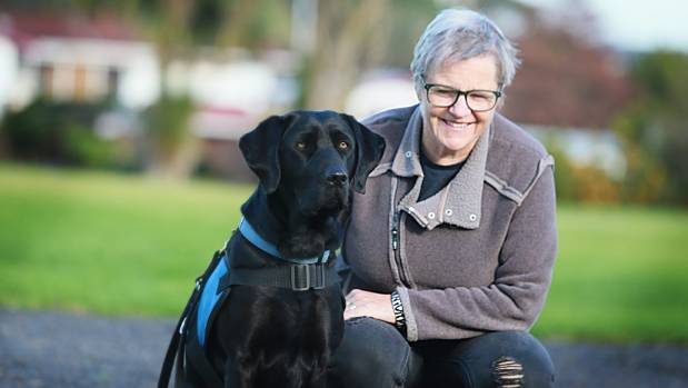 How Long Can A Dog Live With Dementia