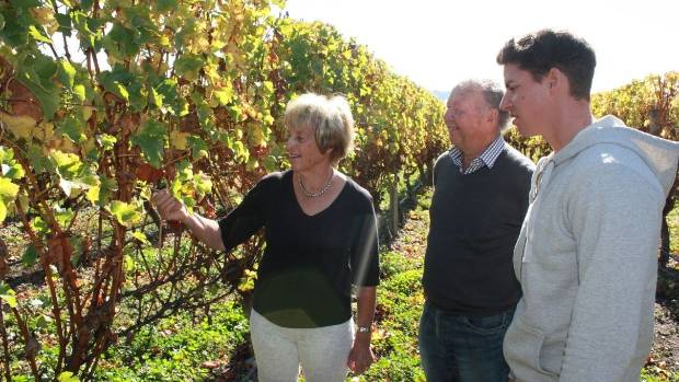 Judy Ibbotson, left, and Neal Ibbotson, centre, give Nick Honeyman, right, a guided vineyard tour at Saint Clair Family ...