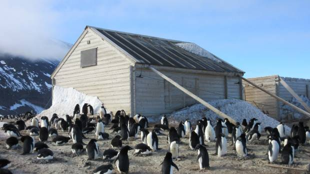 One of two huts at Cape Adare, Antarctica, where the Antarctic Heritage Trust is conserving about 1500 artefacts.
