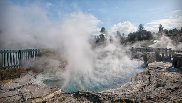 Some of Whakarewarewa's famed geothermal hot pools in Rotorua which will be home to an annual Mud Festival as of next year.