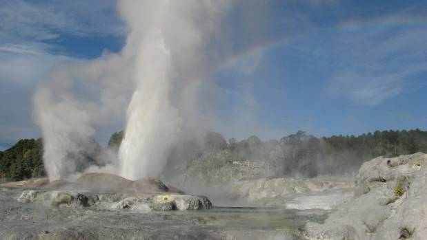 Pohutu Geyser at Te Puia, Rotorua.