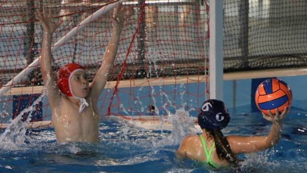 Junior Water Polo Championships at Stadium 2000 from Friday to Sunday