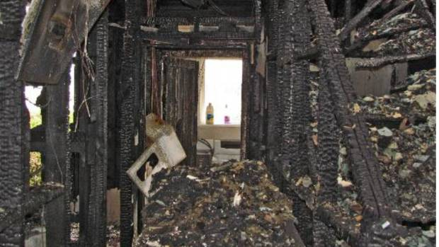 A mysterious container of freshly eaten Chinese takeaway was found at the scene of the 26a Kokiri Cres arson. Police ...