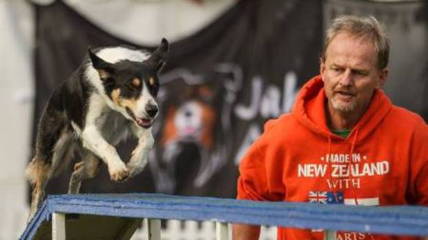 New Zealand's dog agility team of Ali and Peter de Wit at the Australian nationals.