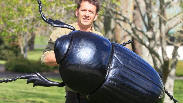Warren King from AgResearch with a giant size model of a black beetle, a pasture pest which is moving south as ...