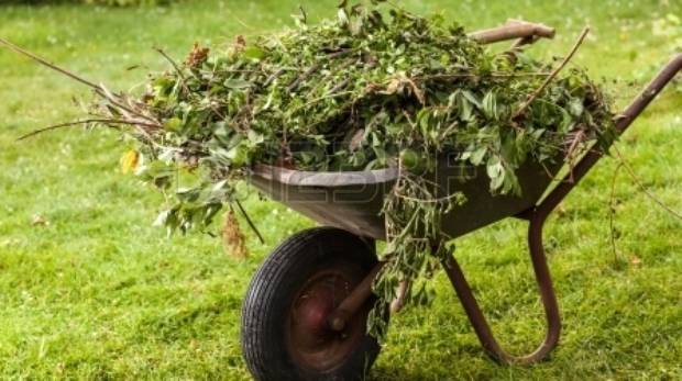 What 39 S The Best Way To Get Rid Of Green Waste