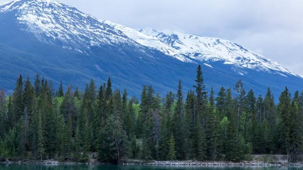 There are plenty of 'wow' moments at the Fairmont Jasper Park Lodge.
