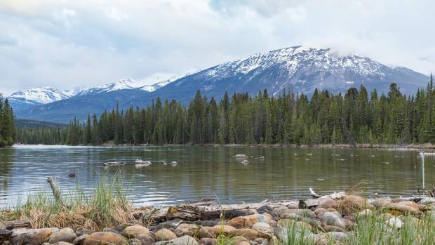 There's no shortage of 'wow' moments at the Fairmont Jasper Park Lodge.