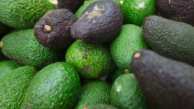 New Zealand thieves selling stolen avocados on Facebook