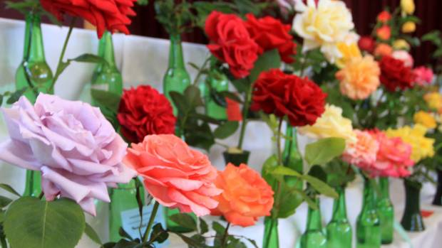 Join A Local Garden Club For Friendly, Helpful Advice.
