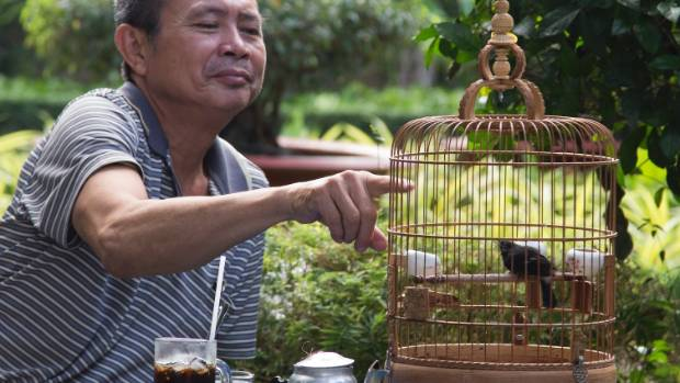 Vietnam travel: finding peace with the songbirds of Saigon in Ho Chi Minh City